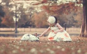 Обои кролик, девочка, бант