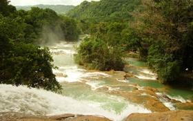 Обои деревья, природа, река, фото, водопады, Mexica, Agua Azul