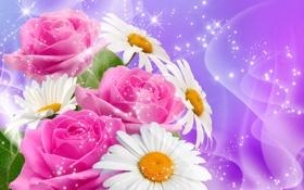 Обои букет, блестки, ромашки, розы