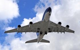 Обои самолёт, реактивный, пассажирский, широкофюзеляжный, двухпалубный, Airbus A380, четырехдвигательный