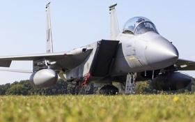 Обои F-15D, кабина, истребитель, Eagle, «Игл»
