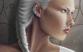 Обои девушка, арт, профиль, коса, украшение, белые волосы
