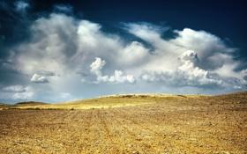 Обои поле, небо, облака, пейзаж, земля, обои, вид