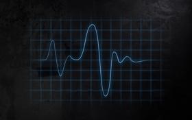 Обои кардиограмма, линии, осцилограф, разметка, фон, колебания