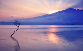 Картинка озеро, дерево, лодка, корабль, гора