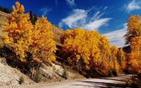 Картинка дорога, осень, небо, деревья, горы, склон
