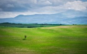 Обои зелень, небо, трава, облака, пейзаж, горы, тучи