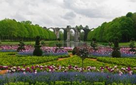 Картинка цветы, парк, Франция, тюльпаны, акведук Ментенон