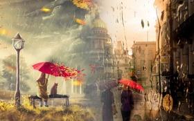 Обои осень, девушка, капли, природа, зонт, фонарь, санкт-петербург