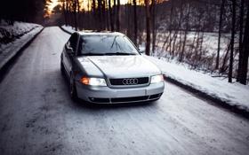 Обои stance, Audi, ауди, догога, серебристая, снег, лес