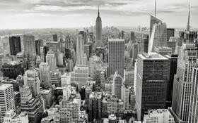 Картинка city, город, здания, небоскребы, white, мегаполис, bkack