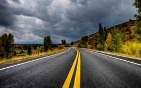 Обои дорога, небо, облака, деревья, горы, тучи, трасса