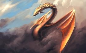 Обои небо, облака, дракон, крылья, арт