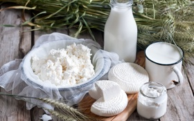 Обои сыр, молоко, творог, milk, cheese, молочные продукты, cottage cheese