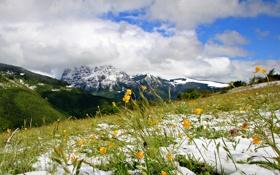 Картинка небо, снег, цветы, горы, тучи, весна