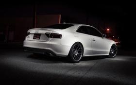 Обои белый, ночь, Audi, тюнинг, купе, задок