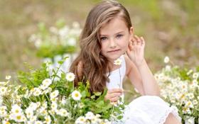 Обои лето, взгляд, цветы, ребенок, girls, Little, маленькая девочка