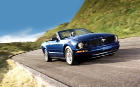 Обои дорога, небо, синий, Mustang, Ford, Форд, Мустанг