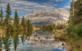 Картинка деревья, горы, озеро, парк, отражение, Jasper, Alberta