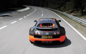 Обои дорога, car, машина, деревья, скорость, bugatti veyron, road