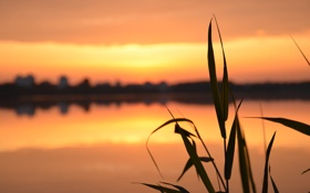 Обои природа, утро, рассвет
