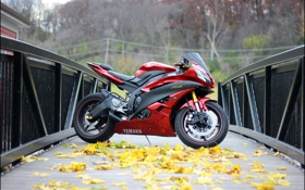 Обои осень, листья, мост, red, красная, yamaha, bridge