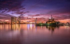 Картинка Australia, Queensland, Gold Coast