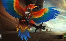 Обои птица, попугай, Heroes of Newerth, Zephyr, Parrot Zephyr