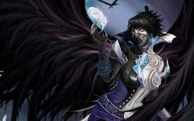 Обои девушка, перо, крылья, арт, Aion