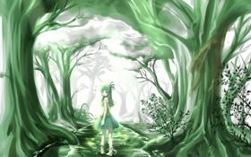 Картинка лес, вода, деревья, ручей, арт, девочка, прогулка
