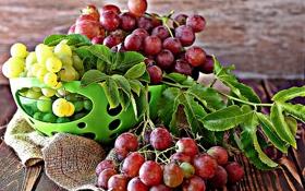 Обои виноград, миска, фрукты, листики, leaves, grapes, fruits