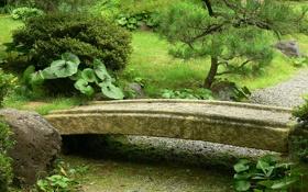Обои дорожка, куст, дерево, аллея, сад, японский, мостик