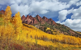 Картинка лес, осень, Sievers Mountain, Maroon Bells, деревья, Colorado, горы