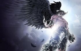 Обои взгляд, крылья, рога, цепи, черные, Tekken 6, tekken