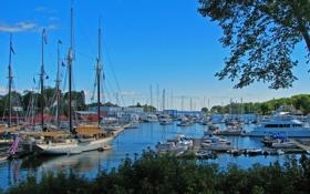Обои небо, деревья, лодка, яхта, порт, залив, стоянка