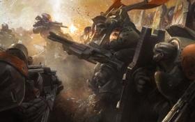 Картинка выстрелы, войны, щит, броня, Destiny, битва, армия