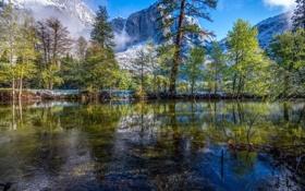 Картинка снег, деревья, горы, отражение, река, Калифорния, USA