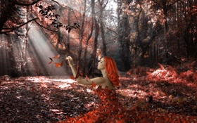 Картинка лес, бабочки, девушка