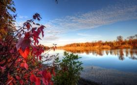 Обои осень, небо, листья, облака, деревья, река