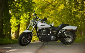 Обои дорога, Harley-Davidson, Fat Bob