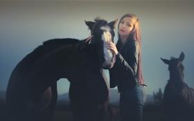 Картинка девушка, фон, кони
