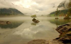 Картинка лес, горы, природа, туман, озеро, дымка, Germany