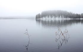 Картинка зима, лес, озеро, Winter Lake