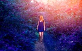 Обои цвета, девушка, тропа, платье
