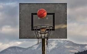 Картинка спорт, мяч, щит