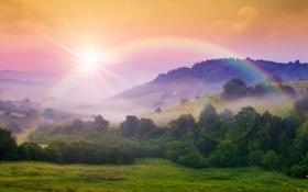 Картинка лес, солнце, деревья, горы, природа, радуга, rainbow