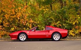 Обои природа, Ferrari, осень, Classic Italia