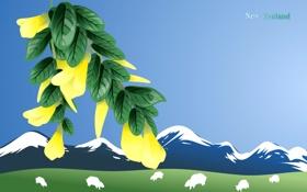 Обои пейзаж, путешествия, государство, туризм, овцы, new zealand, новая зеландия