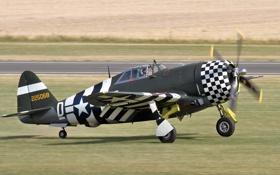 Обои американский, Thunderbolt, истребитель-бомбардировщик, P-47G