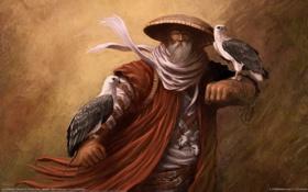 Картинка птицы, шляпа, черепа, старик, борода, dennis chan, птичьи